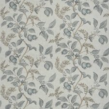Rain Floral Drapery and Upholstery Fabric by Fabricut