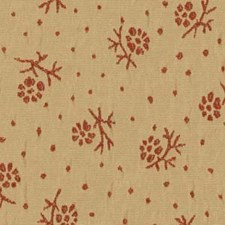 Adobe Drapery and Upholstery Fabric by Robert Allen