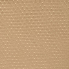 Fossil Drapery and Upholstery Fabric by RM Coco