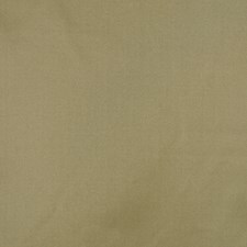 Pistachio Drapery and Upholstery Fabric by RM Coco