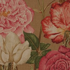 Cafe Au Lait Drapery and Upholstery Fabric by RM Coco