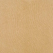 Sungold Drapery and Upholstery Fabric by Duralee