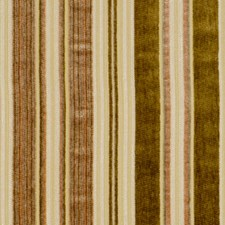 Bamboo Drapery and Upholstery Fabric by Robert Allen