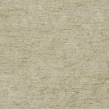 Mushroom Drapery and Upholstery Fabric by Robert Allen /Duralee