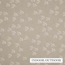 Shell Drapery and Upholstery Fabric by Schumacher