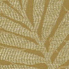 Cashew Drapery and Upholstery Fabric by Robert Allen