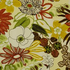 Summer Drapery and Upholstery Fabric by Robert Allen