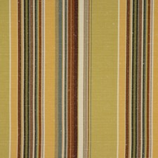 Pear Drapery and Upholstery Fabric by RM Coco
