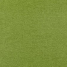 Fern Chenille Drapery and Upholstery Fabric by Duralee