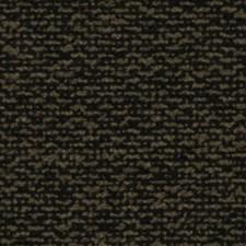 Noir Drapery and Upholstery Fabric by Robert Allen /Duralee