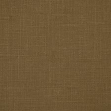 Cappuccino Drapery and Upholstery Fabric by Robert Allen
