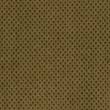 Cashew Drapery and Upholstery Fabric by Robert Allen/Duralee