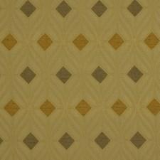 Honeysuckle Drapery and Upholstery Fabric by Robert Allen /Duralee