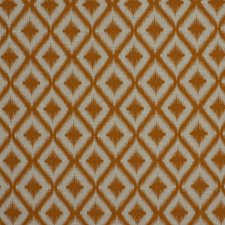 Mango Drapery and Upholstery Fabric by Robert Allen