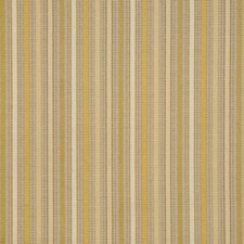 Lemonade Drapery and Upholstery Fabric by RM Coco