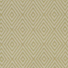 Zest Drapery and Upholstery Fabric by Robert Allen /Duralee