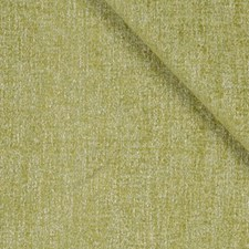 Spring Grass Drapery and Upholstery Fabric by Robert Allen
