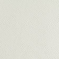 Pale Cream Drapery and Upholstery Fabric by Robert Allen