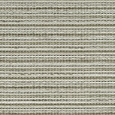 Driftwood Drapery and Upholstery Fabric by Robert Allen