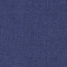 Blueberry Drapery and Upholstery Fabric by Robert Allen