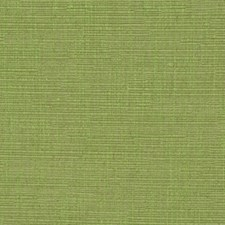 Spring Grass Drapery and Upholstery Fabric by Robert Allen /Duralee