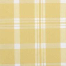 263997 6011 21 Lemonade by Robert Allen