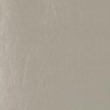 268581 DF16135 24 Celadon by Robert Allen
