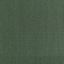 Grass Solid Drapery and Upholstery Fabric by Kravet