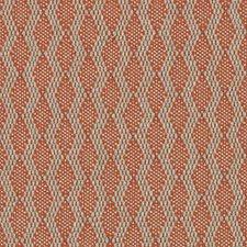 276569 DU16087 451 Papaya by Robert Allen