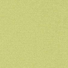 286269 32824 213 Lime by Robert Allen