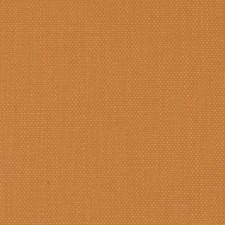 286357 32814 36 Orange by Robert Allen