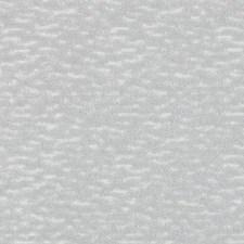 288957 DV15966 159 Dove by Robert Allen