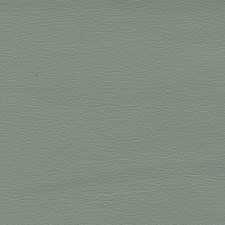 Eucalyptus Drapery and Upholstery Fabric by Schumacher