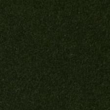 293793 HV16156 321 Pine by Robert Allen