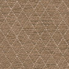 Brown Drapery and Upholstery Fabric by Kravet