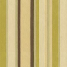 Wasabi Ethnic Drapery and Upholstery Fabric by Kravet