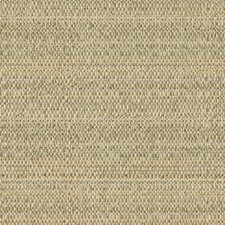 Dew Ethnic Drapery and Upholstery Fabric by Kravet