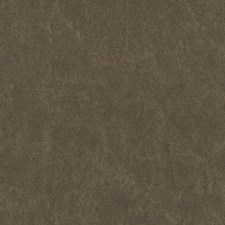 Silvery Solid W Drapery and Upholstery Fabric by Kravet