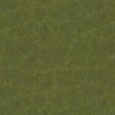 Fern Solid W Drapery and Upholstery Fabric by Kravet