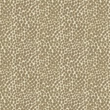 Mushroom Dots Drapery and Upholstery Fabric by Kravet