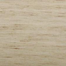 334719 32655 564 Bamboo by Robert Allen