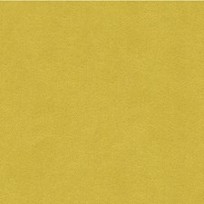 Citron Solids Drapery and Upholstery Fabric by Kravet