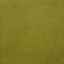 Kiwi Drapery and Upholstery Fabric by Clarence House