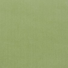 Green Drapery and Upholstery Fabric by Clarence House