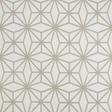 Light Grey/Silver Contemporary Drapery and Upholstery Fabric by Kravet