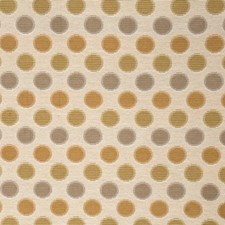 Parchment Contemporary Drapery and Upholstery Fabric by Fabricut