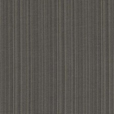 358532 DK61158 174 Graphite by Robert Allen