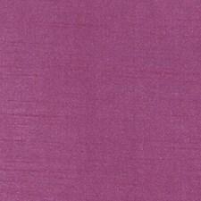 359088 DQ61335 299 Fuchsia by Robert Allen