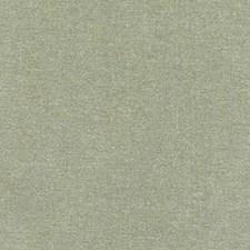 359960 DQ61335 554 Kiwi by Robert Allen