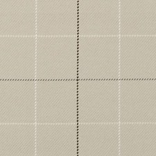 361351 DM61604 587 Latte by Robert Allen